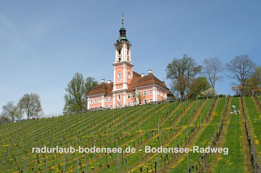 Radurlaub Bodensee - Bodenseeradweg bei der Birnau