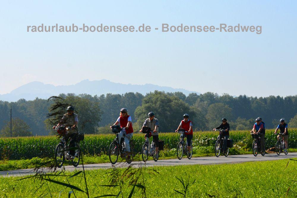 Bodensee-Radweg - Rheindelta
