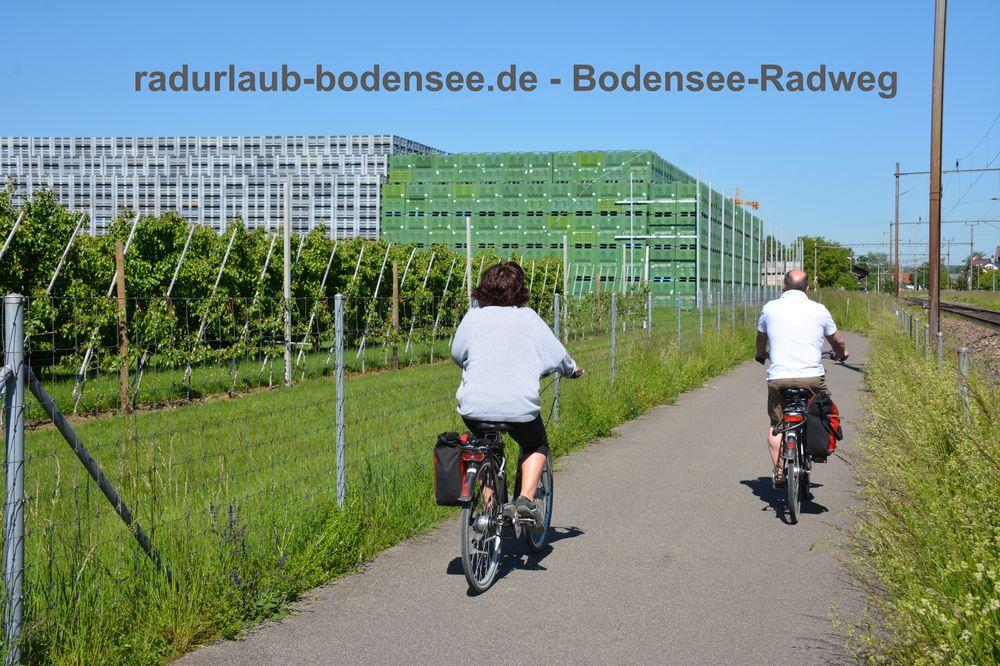 Radurlaub Bodensee - Bodenseeradweg bei Egnach