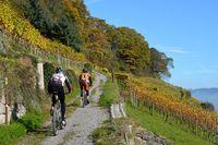 MTB-Tour Bodensee