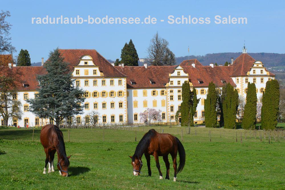 Radurlaub am Bodensee - Schloss Kloster Salem