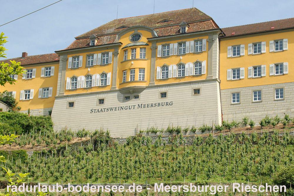 Radurlaub Bodensee - Staatsweingut Meersburger Rieschen