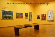 Museum Kloster Allerheiligen Schaffhausen - Gnädinger in Afrika